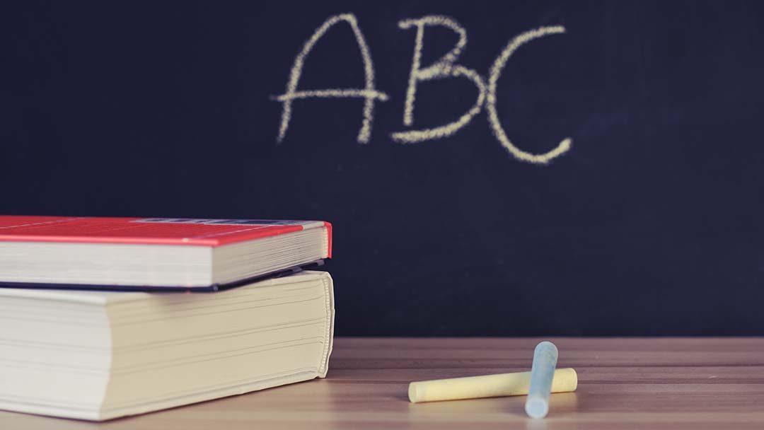 WAP-themamiddag taal en het brein: 2 november
