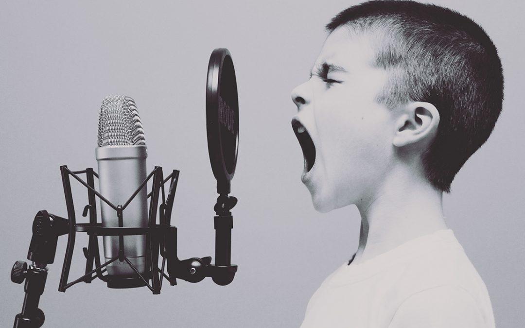 De fonologie van Nederlandse peuters met een taalontwikkelingsstoornis